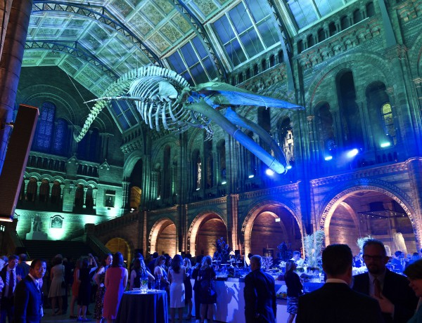 VIP launch of  Hintze Hall, 13th July 2017